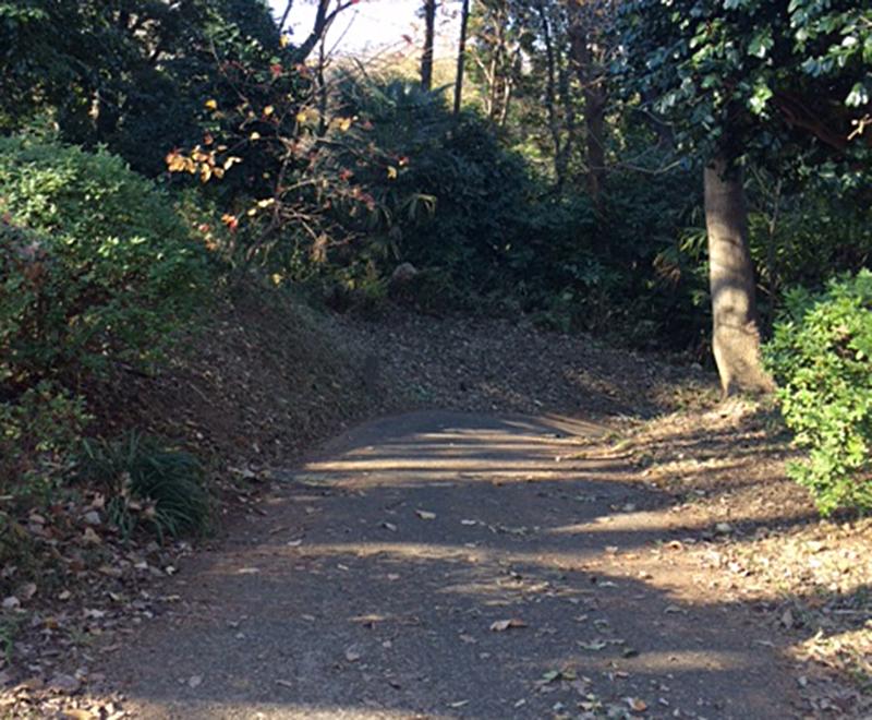 横浜市保土ヶ谷区仏向町 謎の激坂に上ってみた